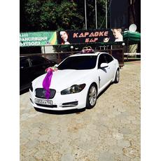 Jaguar XF, аренда авто на свадьбу Услуги